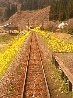 黄色い鉄路