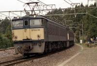 Maruyama10