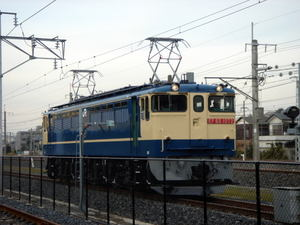 Teppakuef65071217