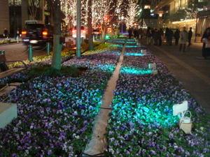 Tokyolightpia071207