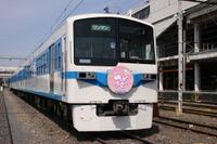 Chichibusakuraex08040503a