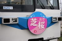 Shibazakura08041303b_2