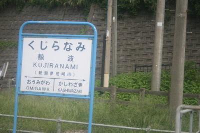 080908kashiwazaki02