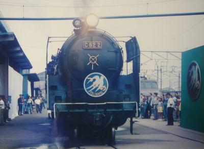 199410oomiyatsubame05