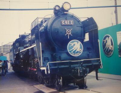 199410oomiyatsubame06