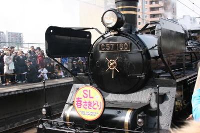 090215slharusakidori01
