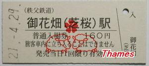 090429shibazakurast02