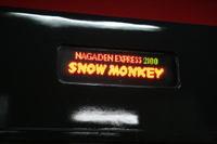 110220snowmonkey01b