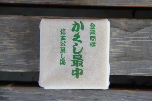 130302yamanashi19
