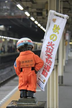 141101hamamatsuchokozo01