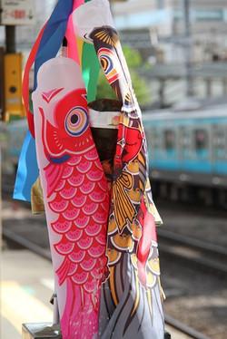 150504hamamatsuchokozo03