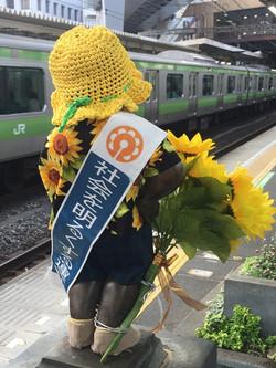 160701hamamatsuchokozo03