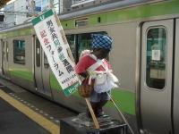 Hamamatsuchokozo07052601