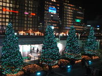 Illuminationshinjuku06b